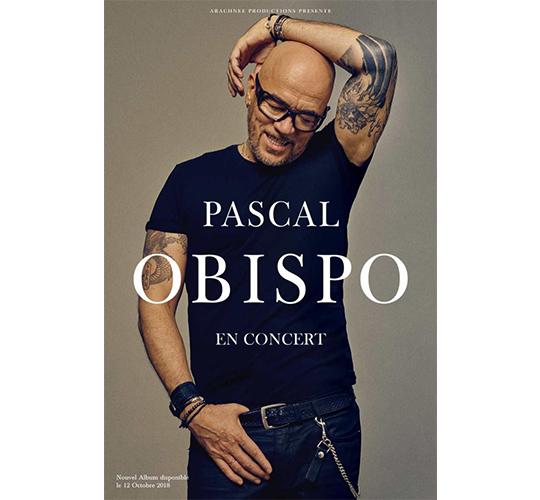 Pascal Obispo - En concert