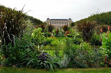 Visite Muséum d'Histoires naturelles de Paris et le Jardin des Plantes
